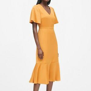 Gorgeous Banana Republic Flutter Sleeve Midi dress